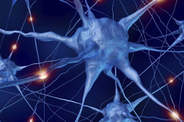 Деградация мозга. Что делать?